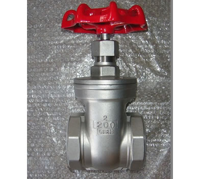 stainless steel screwed gate valve